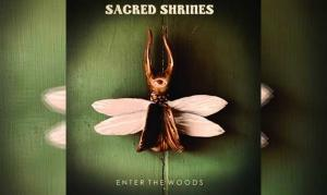 SACRED SHRINES – Enter The Woods