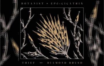 BOTANIST / THIEF – Cicatrix / Diamond Brush