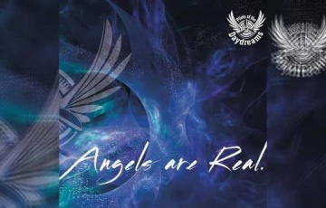 THE PILOTS OF THE DAYDREAMS – Angels Are Real