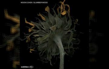 MOON COVEN – Slumber Wood